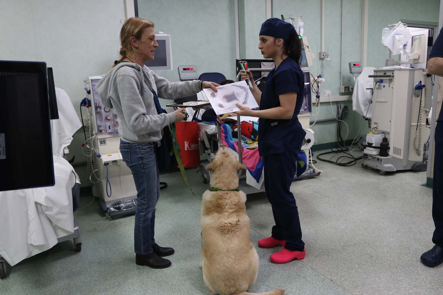 pet therapy Napoli